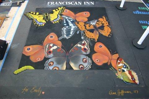 Ann Hefferman_Santa Barbara Butterflies 2007