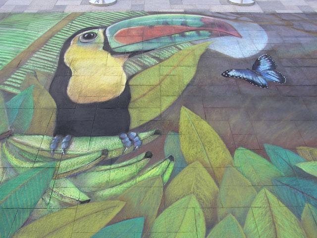 AfAH Dubai RTryon toucan & butterfly
