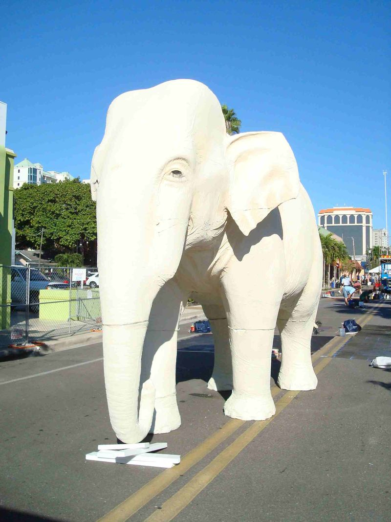 AfAH Sarasota Chalk Festival 001w